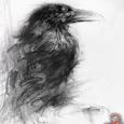 RavenLure