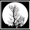Ravenholm [MR-Chaos] - last post by Alden